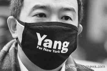 New York polls look good for Andrew Yang. His policies look bad for New Yorkers.