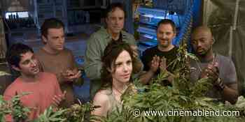 What The Weeds Cast Is Doing Now, Including Mary-Louise Parker - Cinema Blend