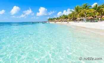 El Gobierno abrió un consulado en Playa del Carmen debido a la gran demanda - Noti Fe
