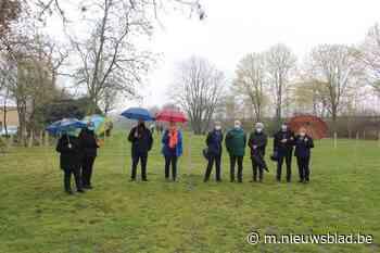 En plots wordt bijna heel het park hondenweide - Het Nieuwsblad