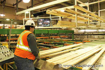 Fort St. James Mayor worried about potential downfalls when hot lumber market cools – BC Local News - BCLocalNews