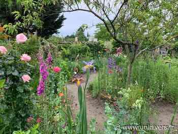 Rencontre avec un jardinier Jardin de Monique Petit Eaubonne - Unidivers