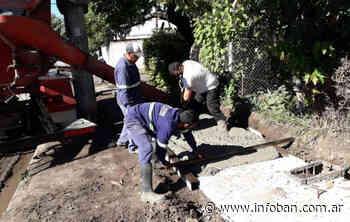 Tigre avanza con la construcción de veredas en El Talar y Rincón de Milberg - InfoBan