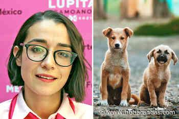 Proponen comisión de Bienestar Animal - NOTI-ARANDAS - NotiArandas