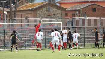 Serie D, pareggio esterno per il Follonica Gavorrano a Sinalunga - LA NAZIONE