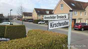 Immobilien: Nach Kritik an Bonava-Plänen – Gemeindevertretung Ahrensfelde schafft Fakten zur Kirschenallee - moz.de