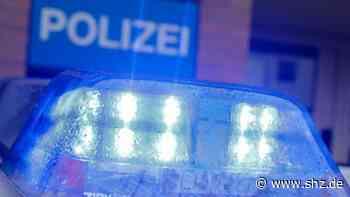 Rellingen: Einbruch in KfZ-Werkstatt: Diebe klauen Navis und Alu-Felgen aus drei Autos | shz.de - shz.de