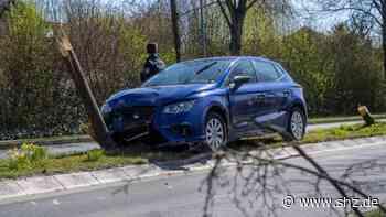 Unfall in Harrislee: Auto fällt zwei Bäume | shz.de - shz.de