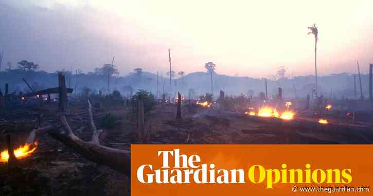 Joe Biden's billions won't stop Brazil destroying the Amazon rainforest | Marina Silva and Rubens Ricupero