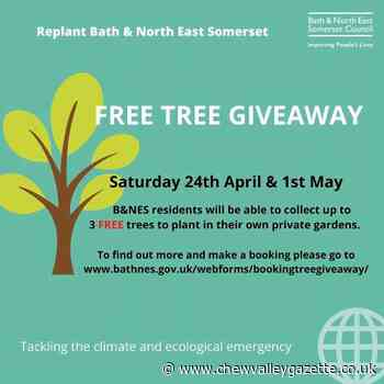 Free tree giveaways to increase Bath and North East Somerset's green canopy - Chew Valley Gazette