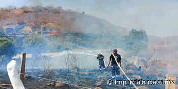 Alarma por incendio en Puerto Escondido que casi se sale de control - El Imparcial de Oaxaca