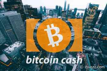 Preisanalyse für Bitcoin Cash (BCH): Eine Korrektur oder das Ende der Rallye? - Invezz