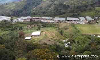 En Dabeiba se construirán más de 100 casas para excombatientes de las Farc - Alerta Paisa