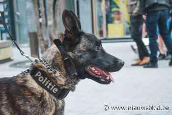 Politie verliest trouwe patrouillehond Barry
