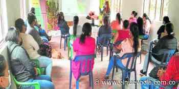 Café sostenible, la apuesta del pueblo indígena pijao en el Pdet - El Nuevo Dia (Colombia)