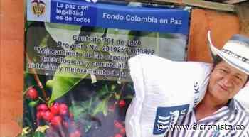 Café sostenible, la apuesta del pueblo indígena pijao - El Cronista