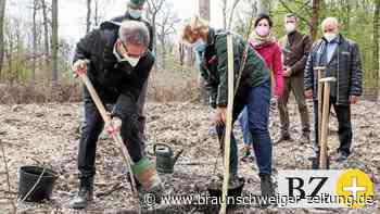 Landwirtschaftsministerin fordert in Wolfsburg Wald-Wertschätzung