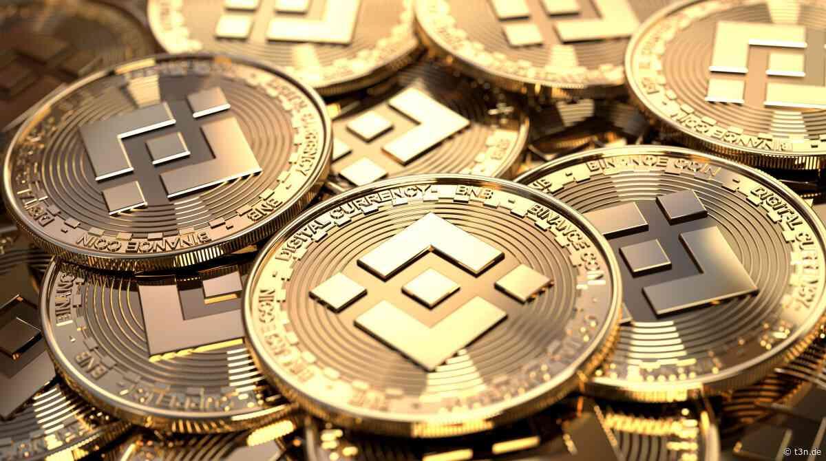 BNB entfesselt: Binance Coin steigt 20 Prozent an einem Tag News 12.04.2021 - t3n – digital pioneers