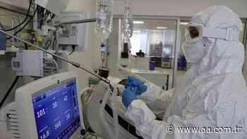 Turkey reports over 54,790 daily coronavirus cases - Anadolu Agency