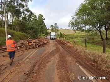 Carreta tomba e derruba toras de madeira em vicinal de Itatinga - G1