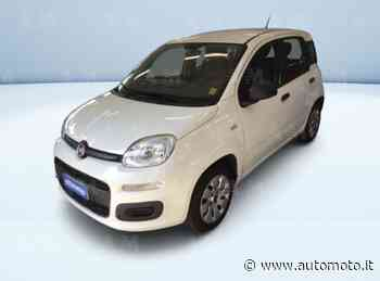 Vendo Fiat Panda 1.2 Pop usata a Olgiate Olona, Varese (codice 8884535) - Automoto.it - Automoto.it