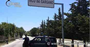 Va di traverso a sette ragazzi di Vico del Gargano la grigliata galeotta in tempo di Covid: multati anche due locali da asporto - il Mattino di Foggia