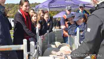 AWI and Orange Anglican Grammar School host agriculture innovation field day | Photos