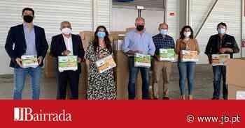 Fraldas para famílias carenciadas do concelho de Oliveira do Bairro - Jornal da Bairrada