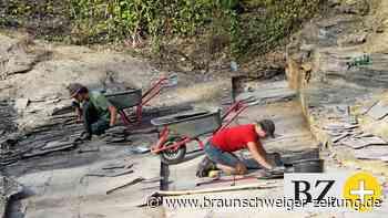 Gemeinderat Cremlingen: Schandelah kann sich nicht entwickeln