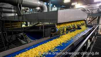 Agrarwirtschaft: Frittenland Belgien: Kartoffelindustrie in der Krise