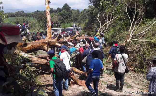 Al menos ocho indígenas heridos en Caldono, Cauca, tras choque con cultivadores de coca - El País