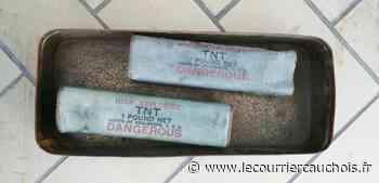 Saint-Romain-de-Colbosc. Un garagiste découvre deux pains de TNT au fond d'une boîte - Le Courrier Cauchois