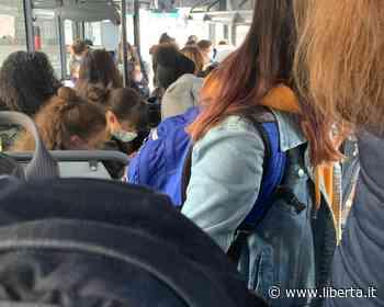 Covid, tampone per i passeggeri dell'autobus da Vernasca a Fidenza - Libertà