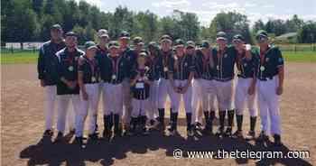 Grand Falls-Windsor Braves heading to Nova Scotia for Atlantic baseball championships   The Telegram - The Telegram