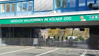 Zoo-Besuche mit negativem Test möglich: Außer in Köln - t-online - Köln