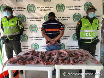 Un capturado en jurisdicción de Hatonuevo con 30 iguanas - Diario La Libertad