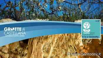 Le Grotte di Castellana celebrano la Giornata Mondiale della Terra 2021: sui social le immagini delle bellezze del territorio - BariToday