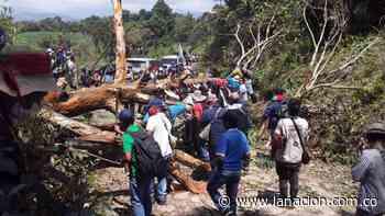 Ataque a indígenas de la vereda Caimito en el Cauca • La Nación - La Nación.com.co
