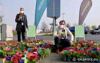 Westenergie schickt Blumengrüße nach Rommerskirchen - Lokalklick.eu - Online-Zeitung Rhein-Ruhr