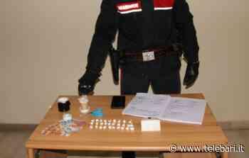 Casamassima, spaccio di cocaina in casa: arrestato 29enne. Sequestrata anche la lista dei clienti - Telebari srl