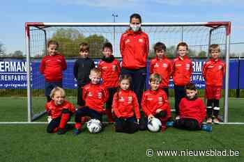 53 jonge spelertjes beleven voetbalstage - Het Nieuwsblad
