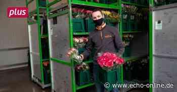 Bunte Blumen aus Hirschberg gegen die Corona-Trübsal - Echo Online
