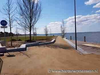 Hekken weg: De Wellen gaan hélemaal los! Harderwijk - Harderwijksezaken.nl - Harderwijkse Zaken