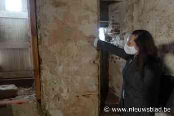 Nieuwe muurschilderingen ontdekt in kasteel van Rode Ridder (maar het publiek zal nog moeten wachten om ze te kunnen zien)