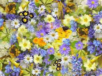 Sortie botanique : Les plantes magiques Atelier JenniFleurs dimanche 6 juin 2021 - Unidivers
