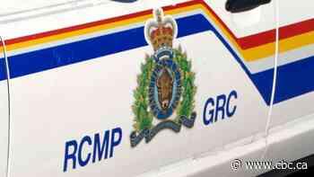 Man's body found in ravine near Miramichi - CBC.ca