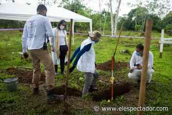Unidad de Búsqueda y JEP recuperan tres cuerpos en el Bajo Atrato chocoano - El Espectador