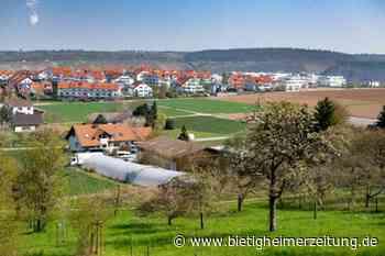 Wohnbebauung in Besigheim bis zum Jahr 2035: Die Zukunft liegt im Schimmelfeld - Bietigheimer Zeitung