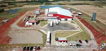 Vibra anuncia investimento em Soledade - Avicultura Industrial