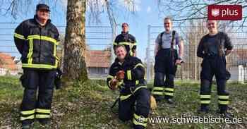 Hühnchen in der Grube: Feuerwehr gelingt tierischer Rettungseinsatz - Schwäbische